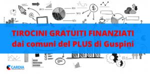 Tirocini Finanziati dal PLUS di Guspini: come candidarsi!