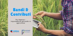 Più Impresa - Imprenditoria giovanile in agricoltura